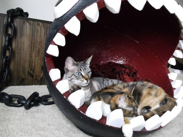 Chain-Chomp cat bed (Mario theme) Source: http://www.catastrophicreations.com/