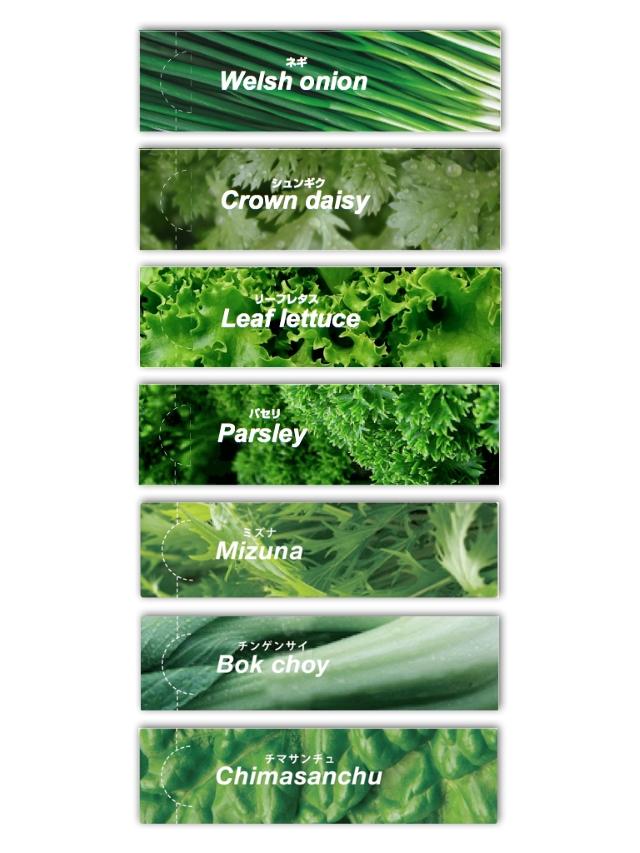 150701_Vegetable001