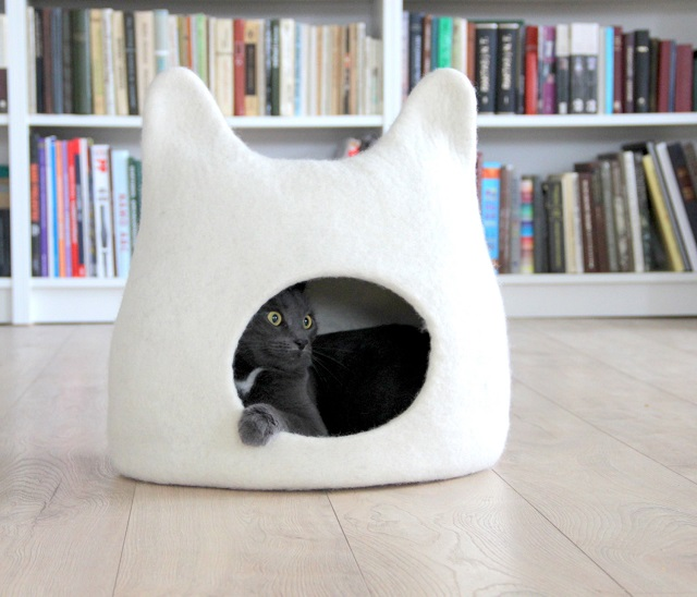 150916catbed01