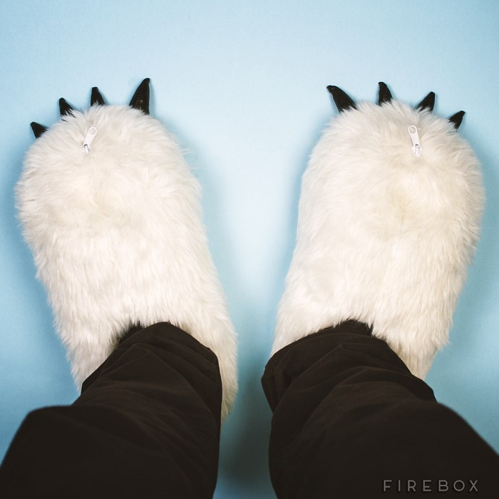 0225ECslippers