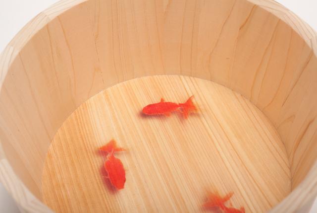 YUIRO湯桶2