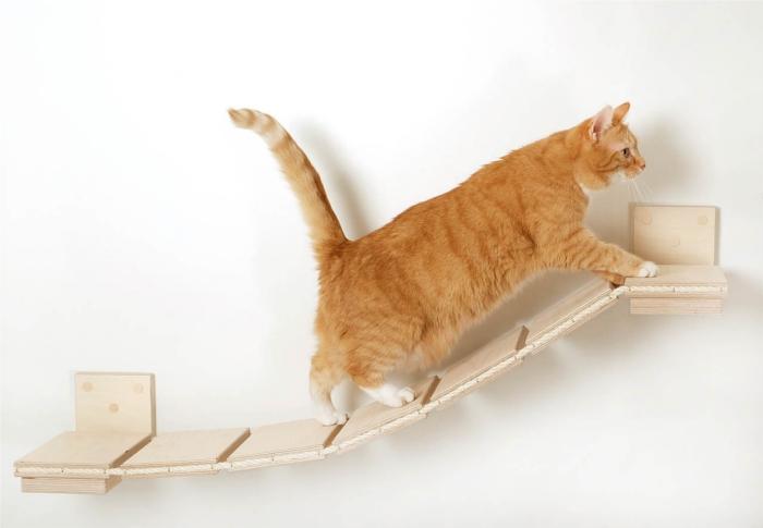ネコの遊び場を作るGoldtatzeゴールドタッツェ2