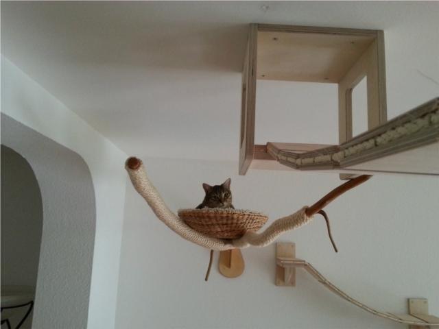 ネコの遊び場を作るGoldtatzeゴールドタッツェ3