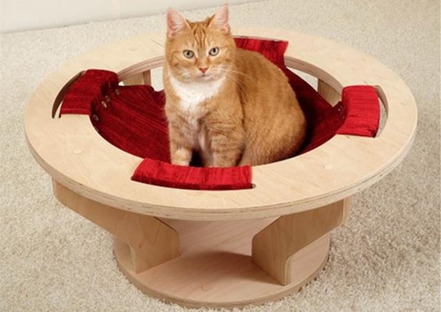 ネコの遊び場を作るGoldtatzeゴールドタッツェ7