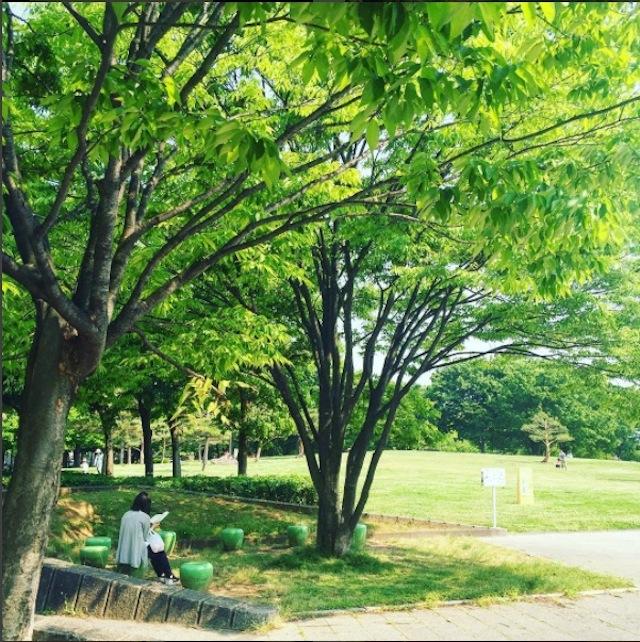 haluta365による冊を読むのに最適な場所を探す信州軽井沢への旅で読む植本一子さんのかなわない_3