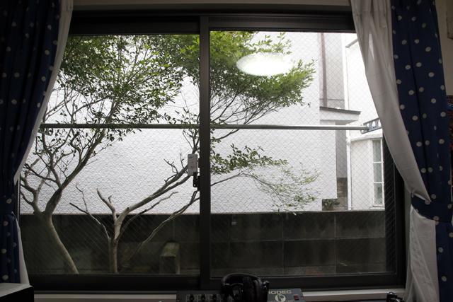 レコードとDJとウーパールーパーを愛して渋谷で暮らす部屋の日当たり