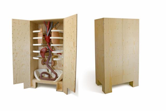イタリア生まれのMarcantonio Raimondi Malerbaさんがつくった人間の体内をモチーフにした棚_1