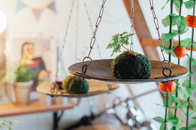 杉並区で、思い出を引き継ぐアートで秘密基地のようなセルフリノベーションの苔や植物_3