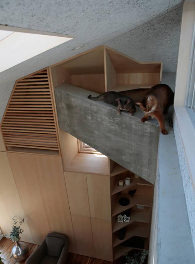 商店街を活性化するツリーハウスのようなおもしろくてデザイナーズな事務所併用住宅の建て替え_8