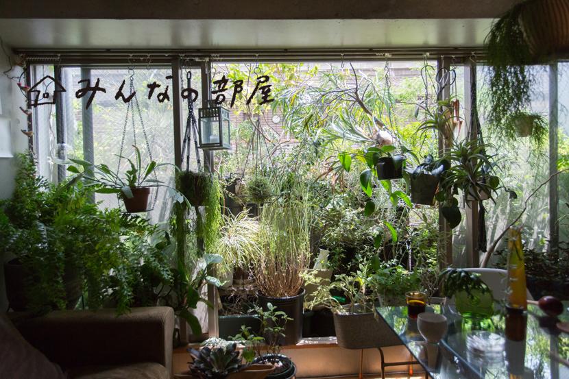 植物がいっぱいの部屋