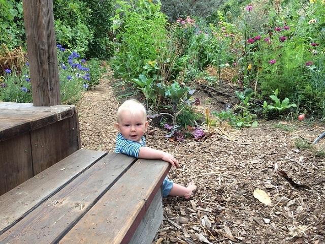 カリフォルニア州・サンタクルーズでゲルとトレーラーハウスを使ってタイニーでミニマルでエコに暮らすおしゃれな一家とかわいい赤ちゃん_8