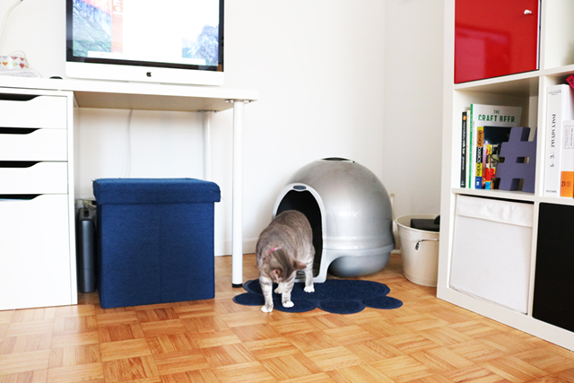 インテリア性が高く、しかも臭い漏れなどを防止するフィルター機能付きの猫用ハウス型トイレ、クリーンステップリッターボックスはアメリカの製品ですが、日本からもアマゾンで購入可能3