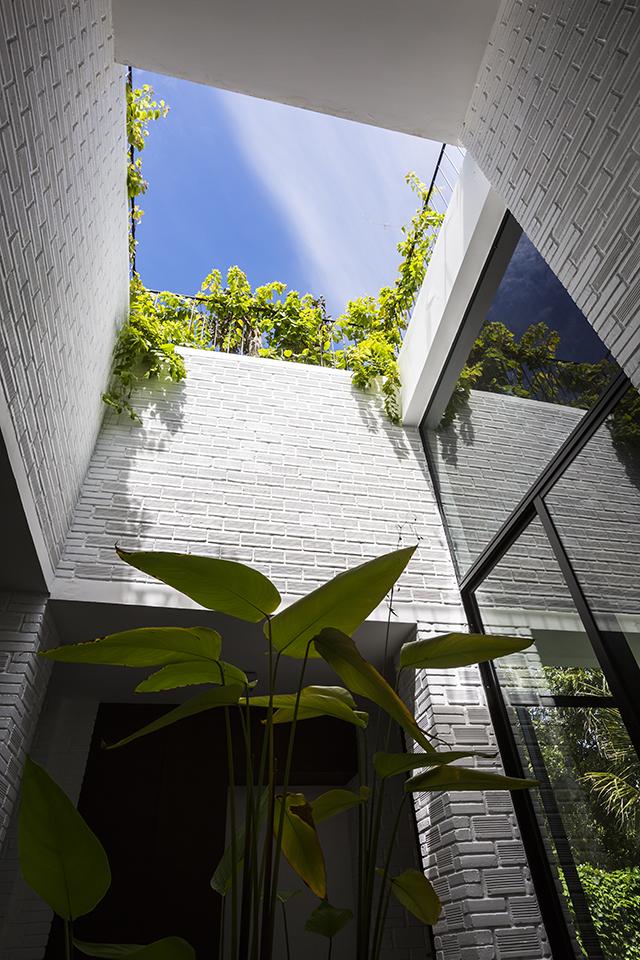 ベトナムのホーチミンとハノイにオフィスを構える設計事務所Vo Trong Nghia Architectsによる屋上に植物を植えて都会で自然が感じられるHoan House_4