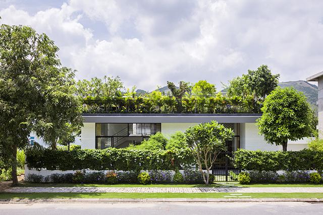 ベトナムのホーチミンとハノイにオフィスを構える設計事務所Vo Trong Nghia Architectsによる屋上に植物を植えて都会で自然が感じられるHoan House_1