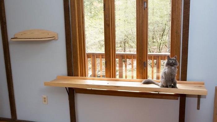 アメリカにクラス猫好きの2人組が愛ネコのために改造した家の紹介。手がけたのは米国でハンドメイド・キャットタワーを販売するMountain PET Productsのレベッカさん。人間の生活の邪魔にならないスペースにキャットタワーとキャットウォークを作りました5