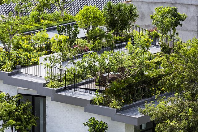 ベトナムのホーチミンとハノイにオフィスを構える設計事務所Vo Trong Nghia Architectsによる屋上に植物を植えて都会で自然が感じられるHoan House_8