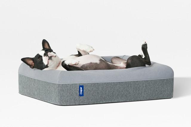 痛みから解放されるマットレスとして有名なメーカーのエンジニアが開発した、おしゃれでかわいい犬用ベッドTHE CASPER DOG MATTRESS_1