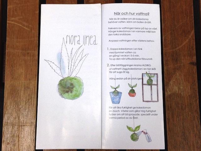 スウェーデンはマルメでもっともクールなエリアにある人気のショップ「Flora Linea」に並ぶのは、日本の盆栽の手法「根洗い」でつくられた「世界に一つだけの苔玉」。日本から8,600kmも離れた土地で、日本の盆栽に魅了された女性を紹介します。5