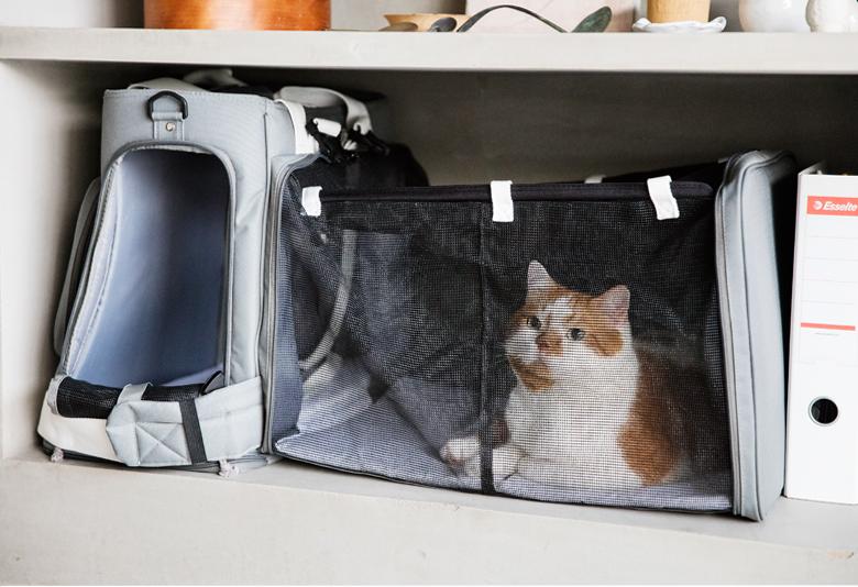災害時のことを考えた「Leonimal」のリュック型ペットキャリーで、ペットを飼っている人は「同行避難」のことを日頃から考えておきたいですね。